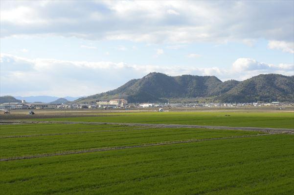 八幡山が望める設計